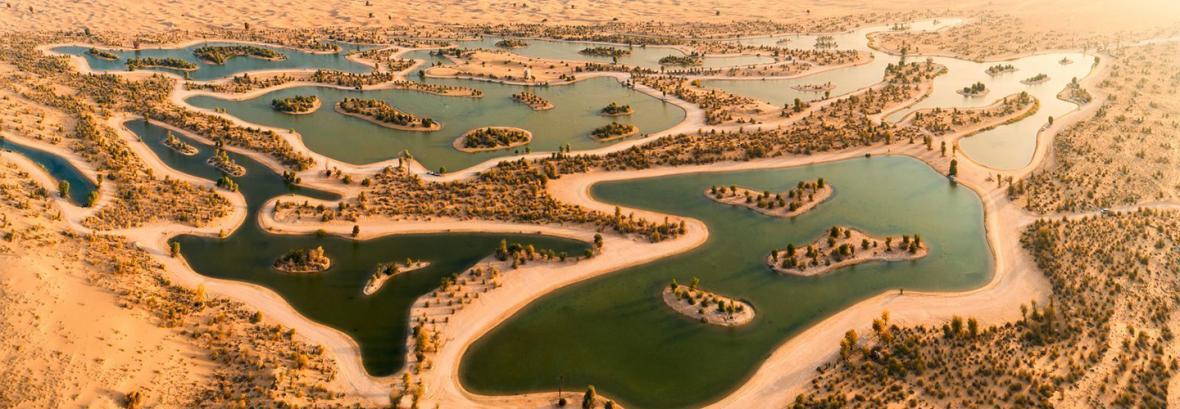 فیلم دریاچه مصنوعی عرب ها در دل بیابان باب الشمس دبی │ 130 گونه پرنده آمدند