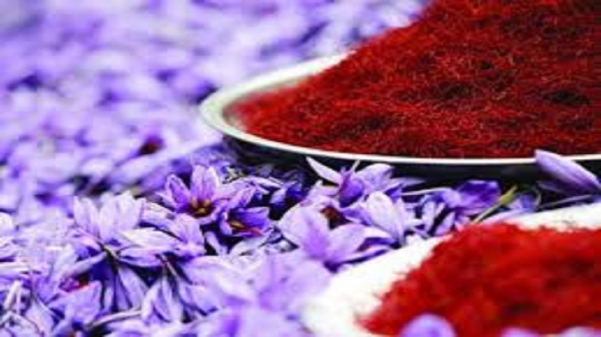 شروع به کار بزرگترین بازار خریدو فروش گل زعفران در تربت حیدریه