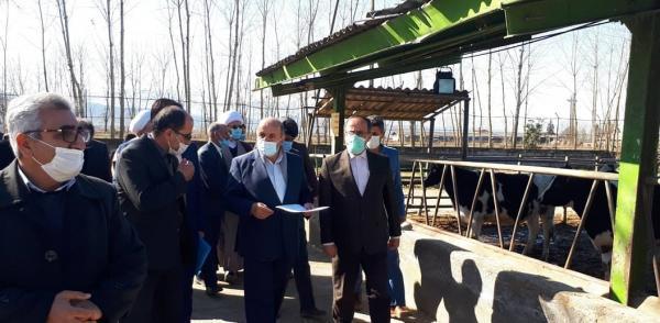 حسن خیریانپورازپروژه های اجرایی ایستگاه ملی تحقیقات گاودشت شهرستان بابل بازدیدنمود
