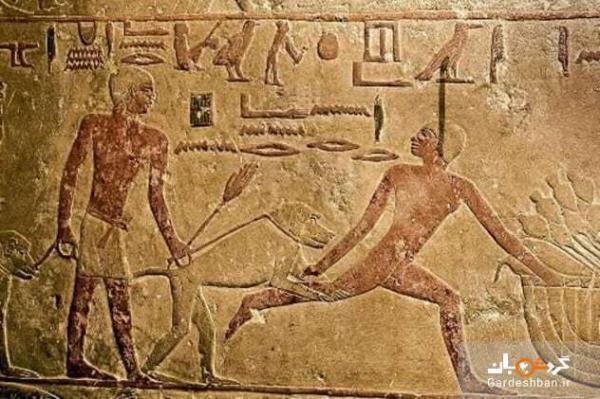 روش هایی در مصر باستان برای آنالیز و حل جرائم